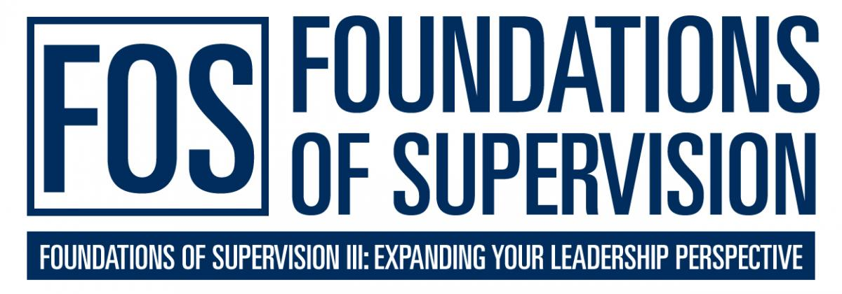 Foundations of Supervision III: Expanding Your Leadership Perspective