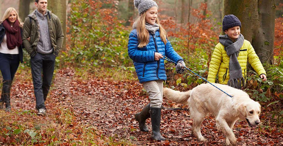 Two adults and two children with a dog on a leash walk along a leaf-covered path.
